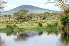 Drömmer du om en häftig safari i Afrika?